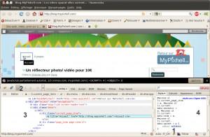 Capture écran plugin Firebug